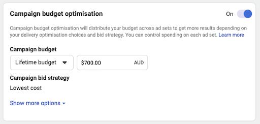 Facebook Ads - Choose Your Budget